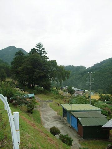 柿其渓谷(南木曽町)