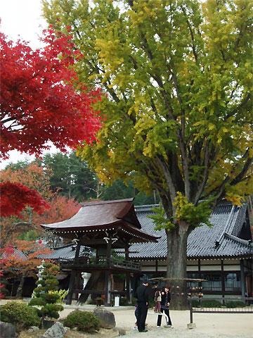 常泉寺(中川村、大草城址公園近く)