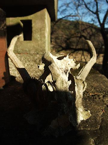 子安神社(伊那市)