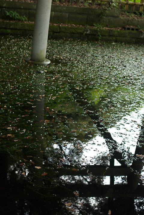 大洗磯前神社(おおあらいいそさきじんじゃ)(茨城県東茨城郡大洗町)