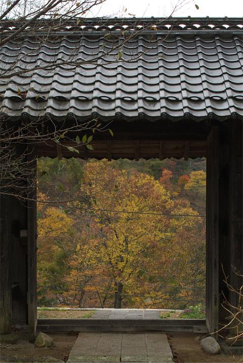 紅葉ドライブ 高遠城址界隈(伊那市)