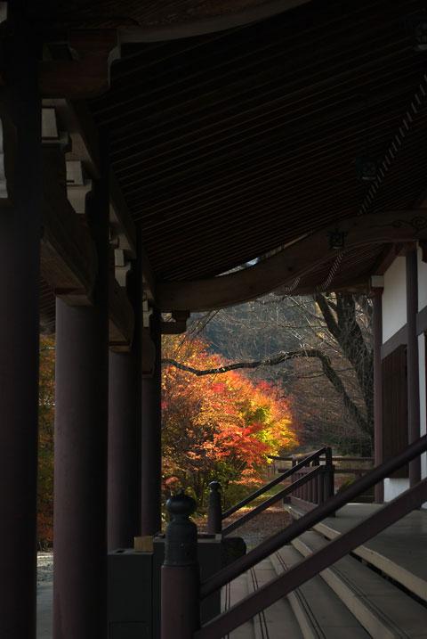 光前寺(駒ヶ根市)