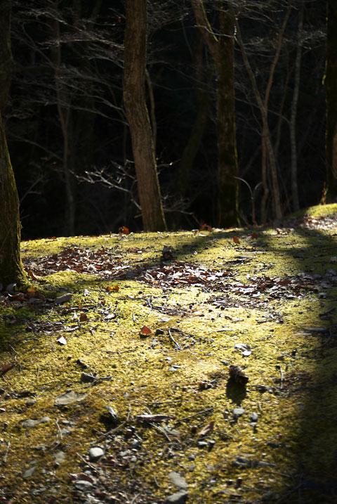 横川の蛇石(辰野町)