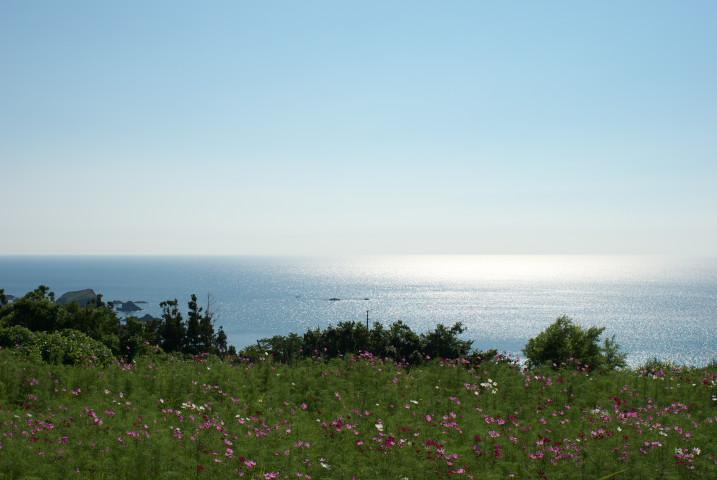 佐渡島旅行、②(二ツ亀) - 2010/8/9(月)