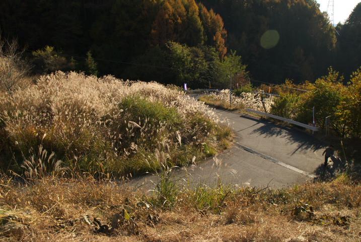 マウンテンクライム in 長谷(伊那市) - 2010/11/7(日)