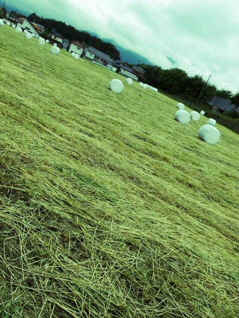 ムー的ななにか(南箕輪村) - 2011/6/11(土)