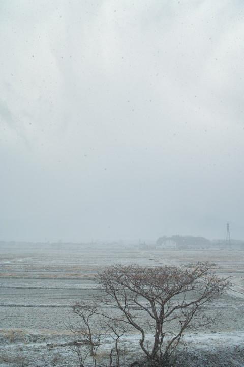 [空の写真] 地震時の雪景(伊那市) - 2011/3/11(金)