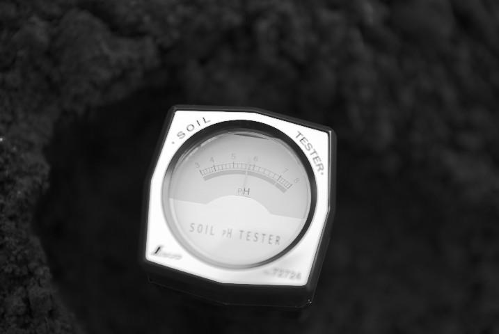 [家庭菜園] 堆肥と消石灰 - 2012/4/1(日)
