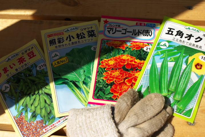 [種蒔き] 小松菜・オクラ・茶豆・マリーゴールド+パプリカ・茗荷 - 2012/4/28(土)
