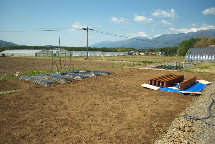 [庭] お隣さんとの境界に枕木を設置んぐ ④(敷設完了) - 2012/5/5(土)
