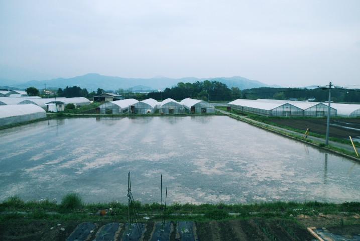 田圃に映る我が家 - 2012/5/9(水)