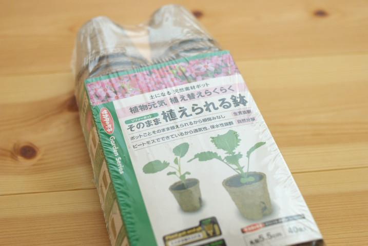 育苗ごっこと種の消化戦 - 2012/5/27(日)