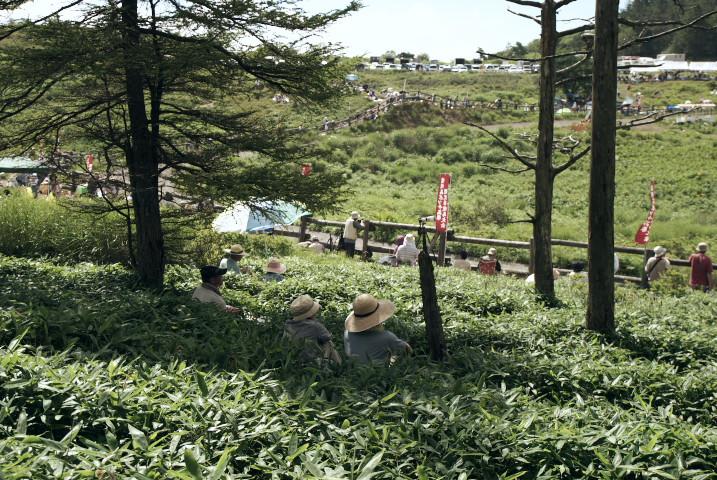 高ボッチ高原 観光草競馬大会(塩尻市) - 2012/8/5(日)