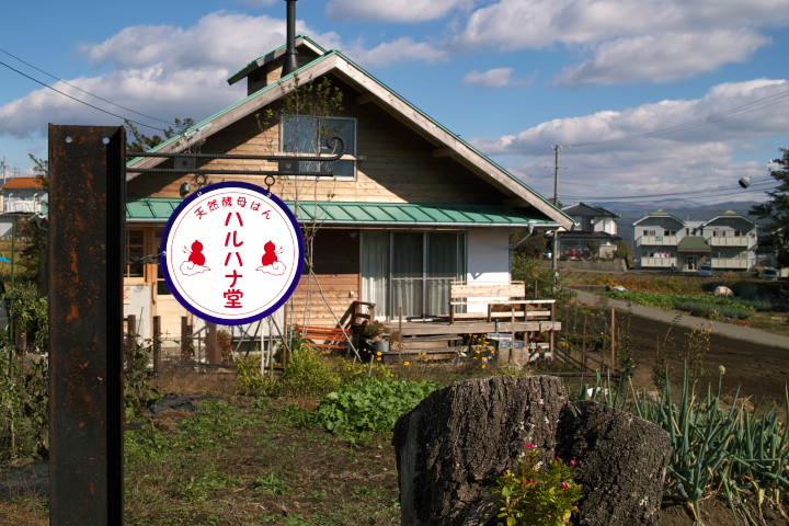 ハルハナ堂(箕輪町)の料理の写真とか