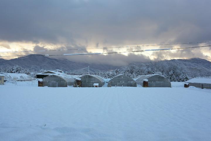 [雪の写真] 雪景に臨む我が家 - 2013/2/13(水)