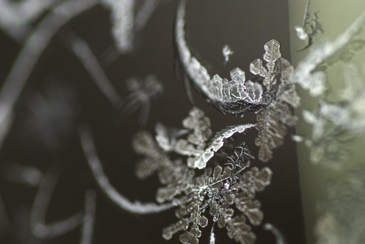 [氷の写真] 氷点下 12度の装身具 - 2013/2/17(日)
