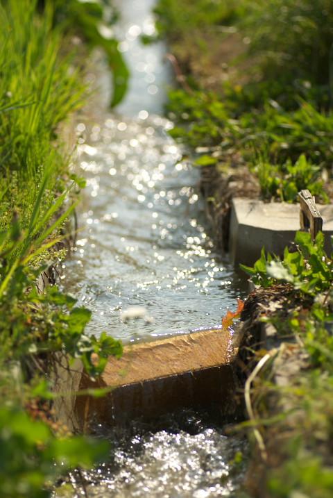 [家庭菜園] 用水路の堰止め - 2013/5/26(日)