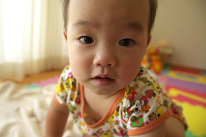 我が子の写真