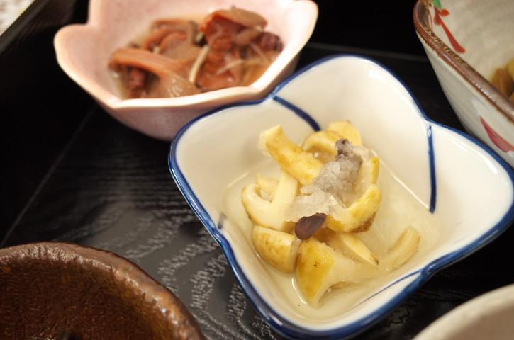 千代田荘(伊那市高遠町;山菜と茸の宿)