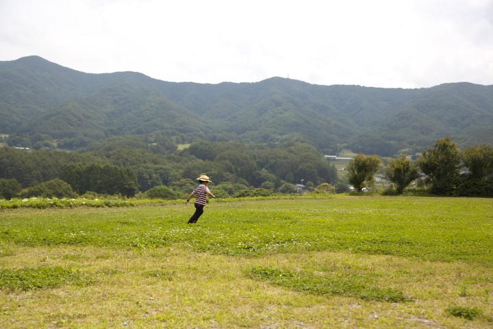新山 トンボの楽園